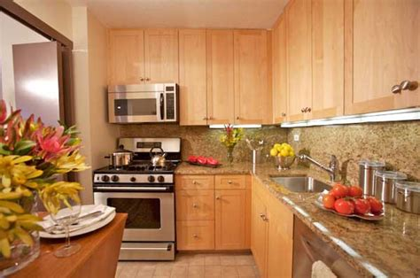 photos of kitchens waterside plaza model kitchen nybits