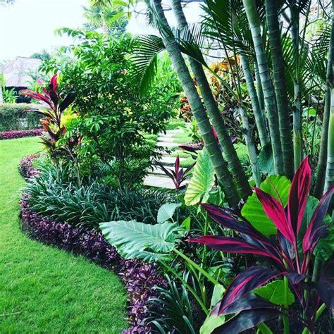 Tropical Gardening Ideas Best 20 Tropical Gardens Ideas On