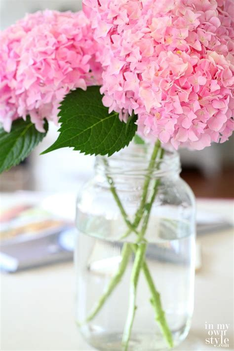 how to cut hydrangeas so they won t wilt floral