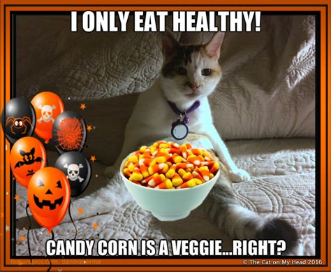 Candy Corn Meme - the cat on my head does friendly fill ins question about