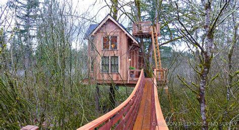 best treehouses prepossessing 90 treehouse inspiration design of nelson