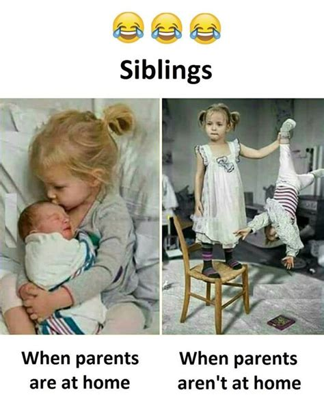 Siblings Fighting Meme - best 25 sibling humor ideas on pinterest siblings