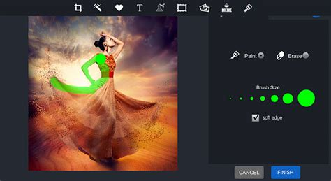Edit Meme Online - photo editor pizap free online photo editor