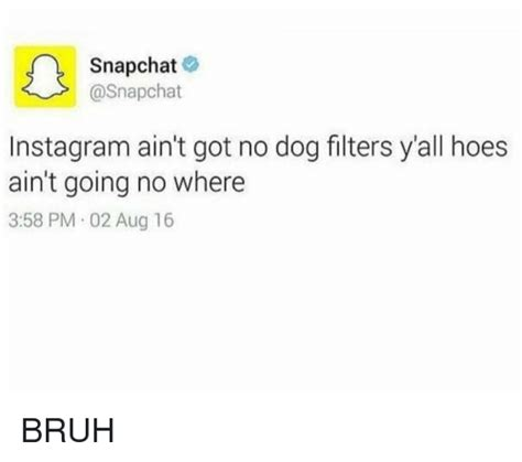 memes  hoes dogs  hood hoes dogs