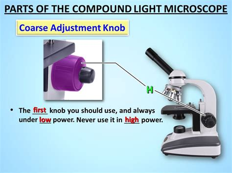Coarse Adjustment Knob Microscope by The Microscope Ppt