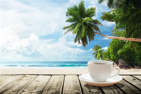 Coconut Oil In Coffee For Weight Loss