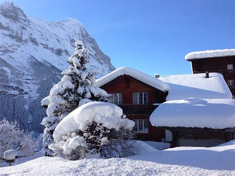 einsame hütte im schnee mieten free photo hut mountain hut snowy wintry free image