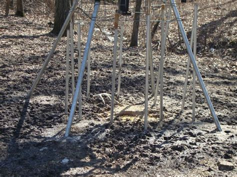 Shed Catcher by 17 Best Images About Antler Traps On