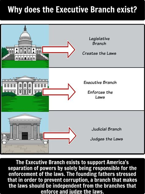 diagram of executive branch 21 best the executive branch images on