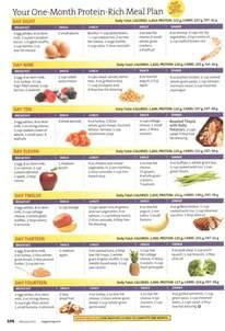 25 best high protein meal plan ideas on protein diet plan vegetarian protein