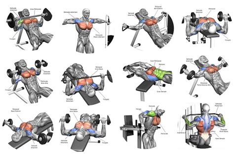 the 15 best chest exercises 5 tips for the best chest workout all bodybuilding com