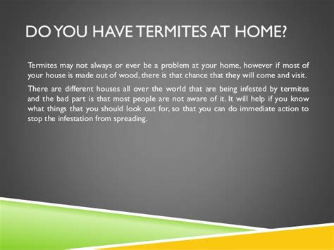 5 signs you termites in your adelaide home