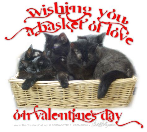 happy valentines day cat happy s day the creative cat