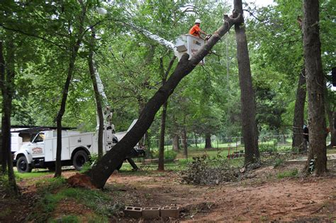 service oklahoma tree removal services choctaw ok arborscapes tree service tree service serving