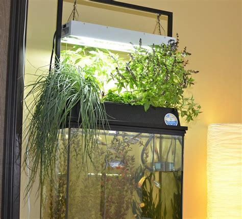 T5 Light Fixtures For Aquariums The Galaxy T5 90 Is An T5 Lighting Fixtures For Aquariums
