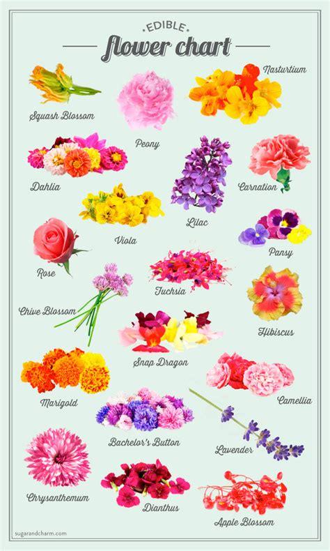 hand by made misswallflower edible flower chart