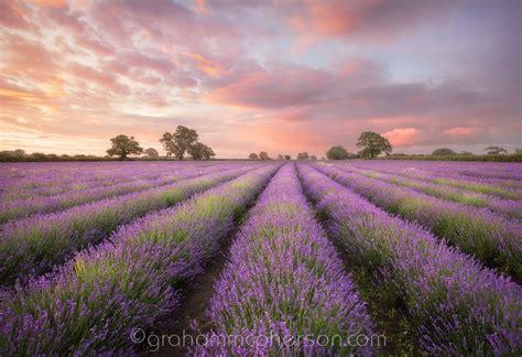landscape photographers somerset landscape photography by graham mcpherson
