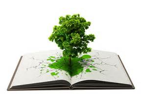 tree books tree in book by hamioui on deviantart