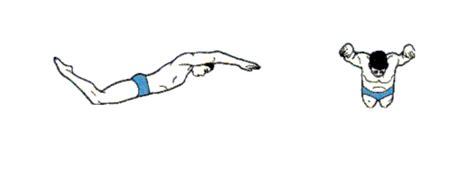 gif format html 蝶泳 动作要领图解及换气技巧 健身 运动 经验 裨益网