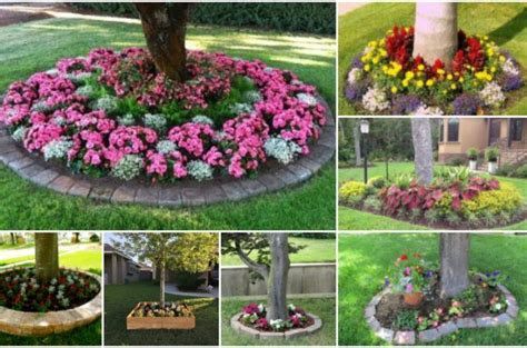 flower beds around trees 314 best images about tuin garden on pinterest gardens