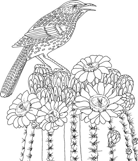 Difficult Animals Coloring Pages For Adults Coloring Pages For Adults