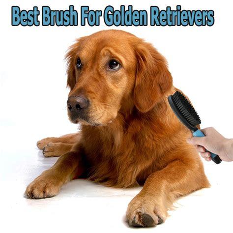 best brush for golden retriever best brush for golden retrievers