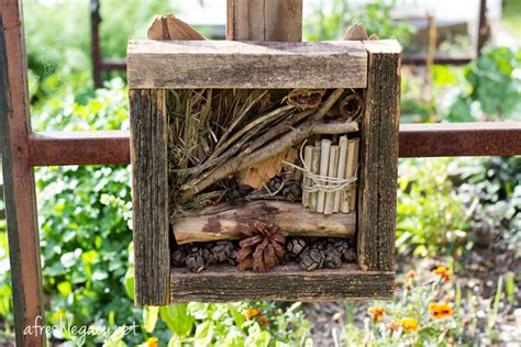 bed bugs hotel encourage beneficial insects in the garden with a bug hotel