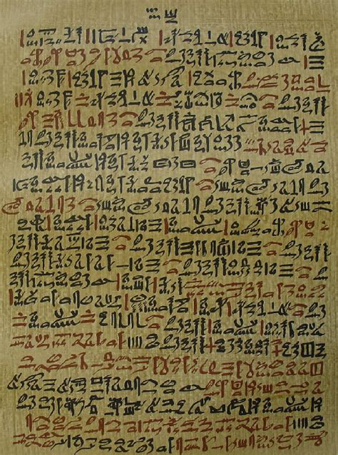 the features of the papyrus ebers books opinions on ebers papyrus