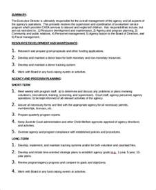 Practice Director Description by Sle Executive Director Description 10 Exles In Word Pdf