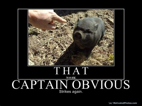 Thanks Captain Obvious Meme - image 67034 captain obvious know your meme