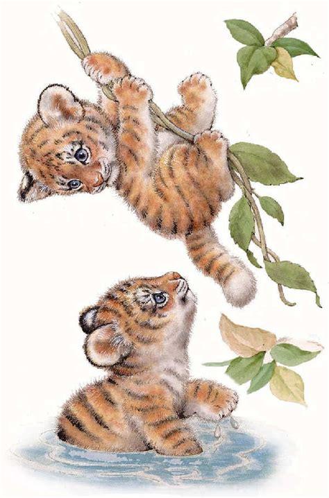 imagenes de animales jungla zoo jungla selva animales imagenes para bajar