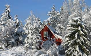 photos of snow winter and snow scenes free desktop wallpapers for