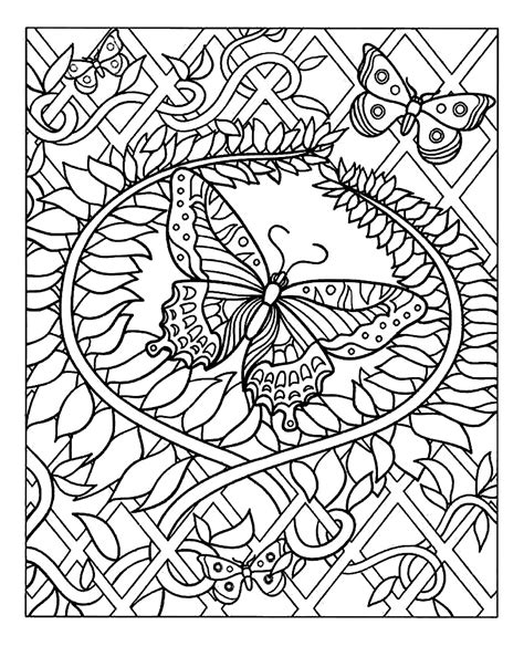 insect coloring pages insects coloring pages for adults coloring difficult