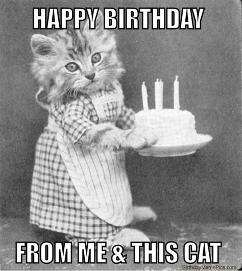 Birthday Card Meme - best 25 friend birthday meme ideas on pinterest funny