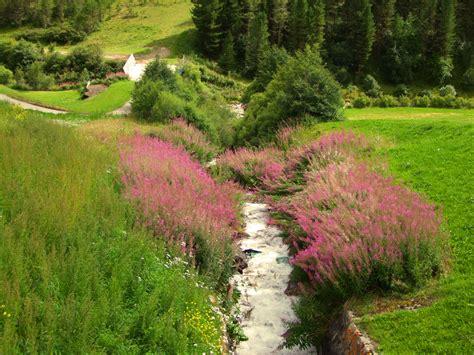 ruscelli da giardino ruscelli da giardino con arredo giardino scontatissimo
