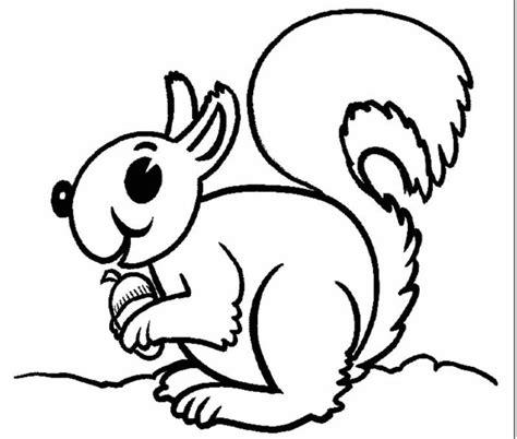 http www ahiva info colorear el arte de ense 241 ar colorear ardilla 3