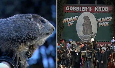 groundhog day yearly results groundhog day 2018 punxsutawney phil in