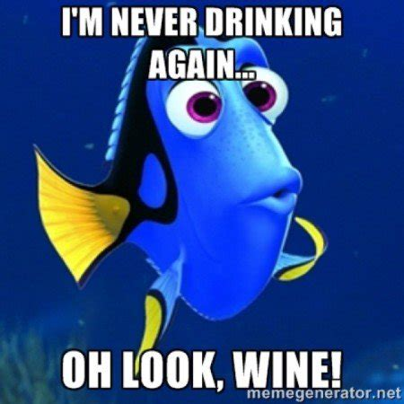 Never Meme - 20 of the best wine gifs memes on the internet calais