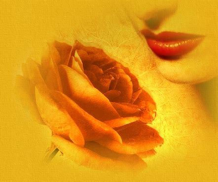 fiori e donne donne e fiori let 237 cia thompson tradotto da marli