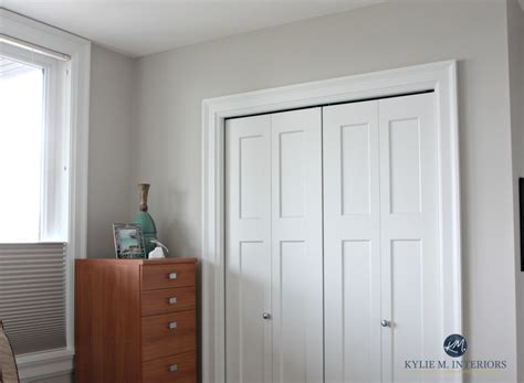 sherwin williams    gray  greige paint colours