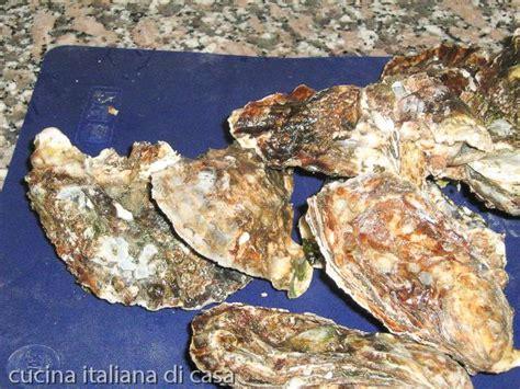 come cucinare le ostriche mitili o molluschi ricette di cucina