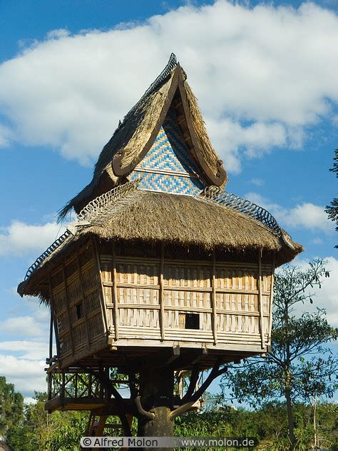 lao wooden house  pole unique vernacular architecture house  poles laos