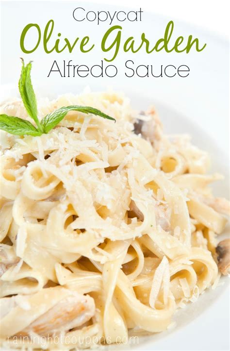 Copycat Olive Garden Alfredo Sauce by Copycat Olive Garden Alfredo Sauce Recipe Copy Cat
