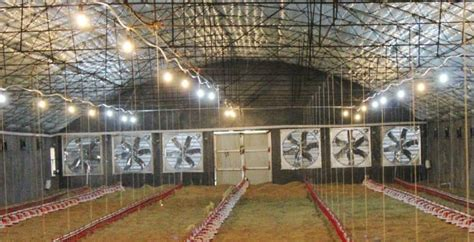 poultry house ventilation fans plastic slat poultry chicken floor for farming equipment