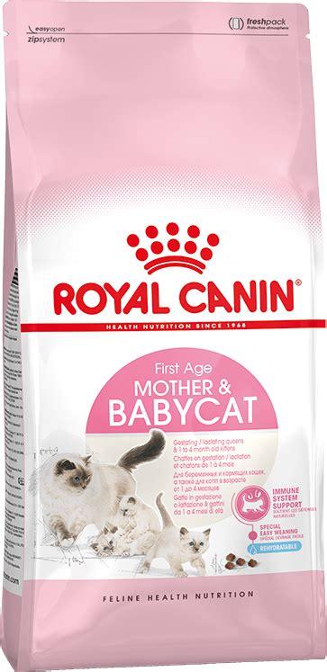 Murah Catfood Royal Canin Babycat 4kg babycat premium cat food royal canin au