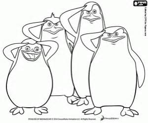 penguins of madagascar coloring pages penguins of madagascar coloring pages printable