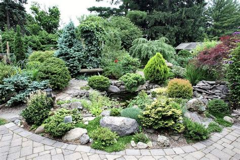 dwarf conifer garden in dewitt ny cny homes pinterest dwarf and gardens