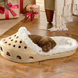 Puppy Beds For Small Dogs 21 Pet Beds That Won T Ruin Your Decor Brit Co