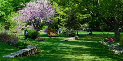Harvard Botanical Garden with Arnold Arboretum Of Harvard American