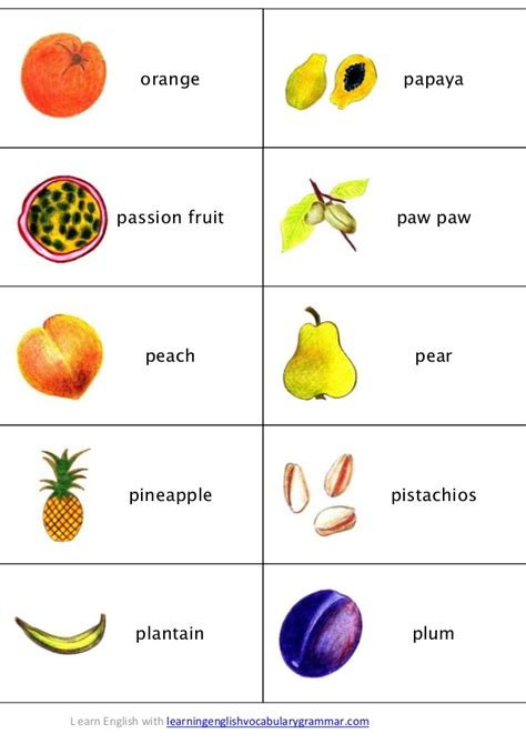 4 vegetables name names of fruits in images